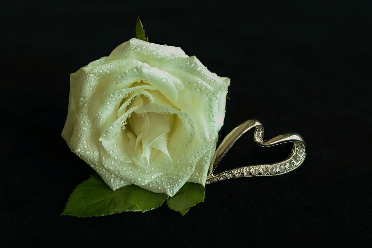 Anniversario Matrimonio Origini.Nozze D Argento Origine E Consigli Per Festeggiare